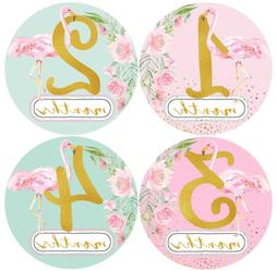 Mumsy Goose Baby Girl Monthly Stickers 1-12 Months Pink Flam